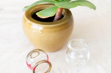 טיפול טבעי בגסטריטיס כרוני